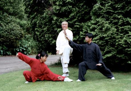 Taiji Quan: la danza del guerriero 10