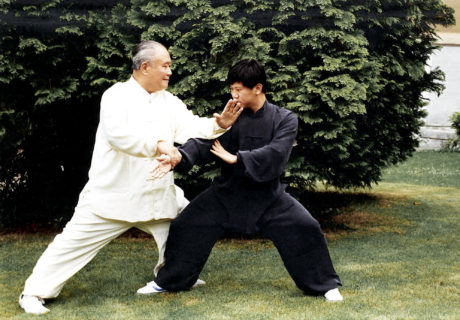 Taiji Quan: la danza del guerriero 14