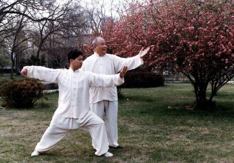 Taiji Quan: la danza del guerriero 16
