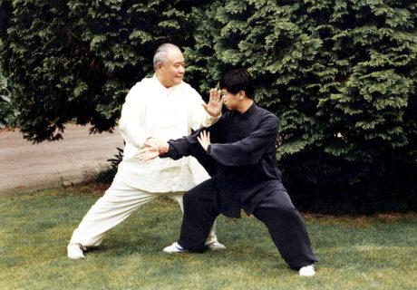 Taiji Quan: la danza del guerriero 18