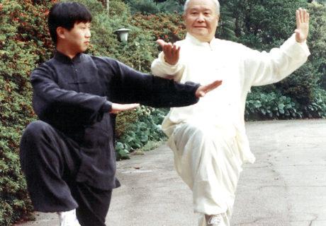 Taiji Quan: la danza del guerriero 12