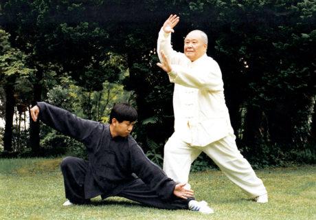 Taiji Quan: la danza del guerriero 8