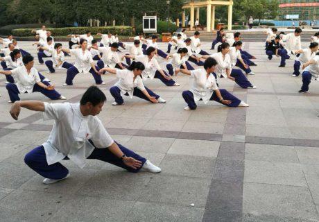 Yang Jun (杨军) 12